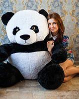 Панда 180 см