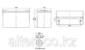 Тяговый аккумулятор Challenger EV12-110 (12В, 110Ач), фото 2