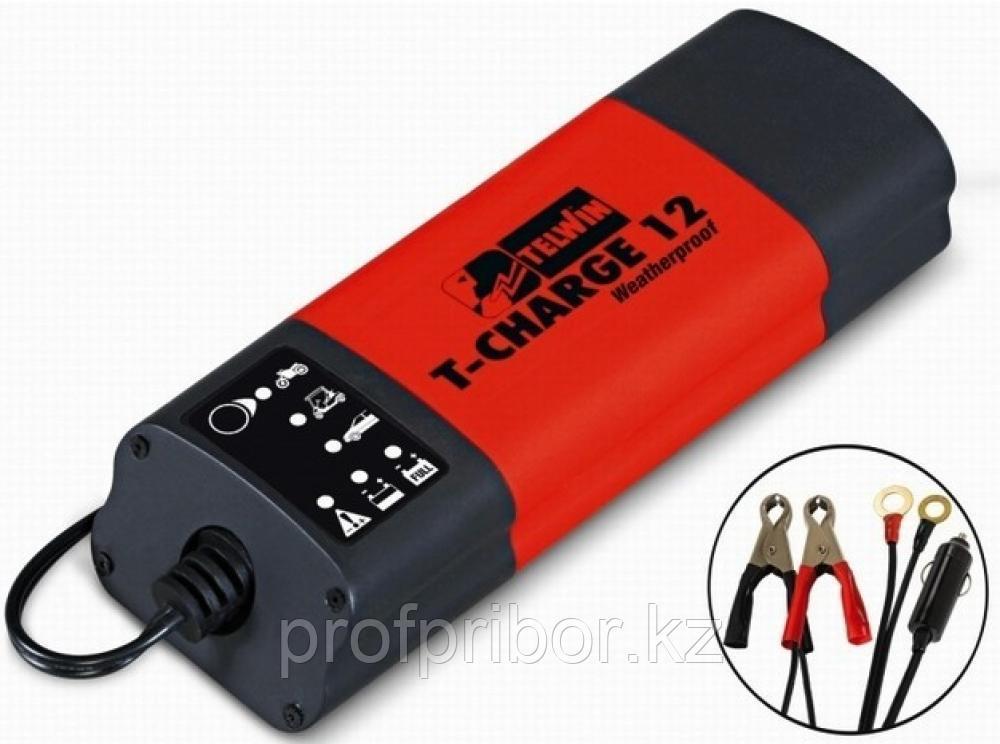 Зарядное устройство Blueweld Т-Сharge 12