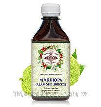 Растительный экстракт «Адамово яблоко» (маклюра)