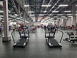 Беговая дорожка для функционального тренинга RUN PRO, фото 3