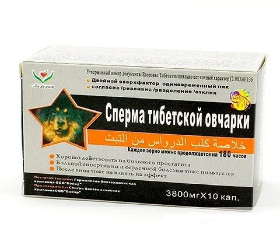 Сперма тибетской овчарки - мужской возбудитель