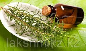 Эфирное масло чайного дерева, Magic of India, 10 мл