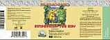 Бад Бифидозаврики жевательные таблетки для детей с бифидобактериями НСП, фото 2
