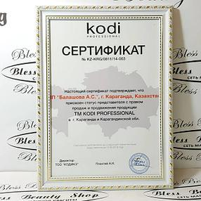 """Только оригинальная продукция """"KODI Professional"""""""