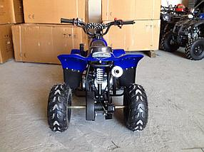 Квадроцикл Raptor 110cc, фото 2
