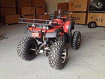 Квадроцикл Grizzly 250сс, фото 2
