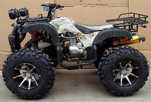 Yamaha Grizzly 250 , фото 2