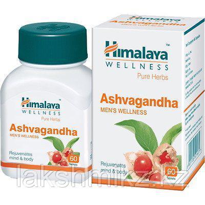 Ашвагандха (Ashwagandha, Himalaya)