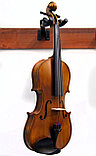 Скрипка , фото 4