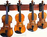 Скрипки всех размеров , фото 3