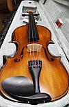 Скрипки всех размеров , фото 2