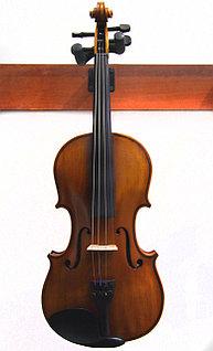 Скрипки всех размеров