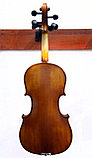 Скрипки всех размеров , фото 5