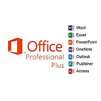 Офисное приложение Microsoft OfficeProPlus 2016 SNGL OLP NL (79P-05552)