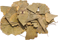 Гинкго билоба лист брикет 1 кг