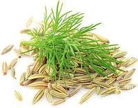 Фенхель семя брикет 1 кг ОРГАНИК