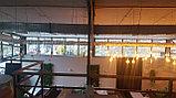 Освещение помещений лампами Эдисона, оформление лампами Эдисона, оформление кафе, ресторанов, потолков, фото 3