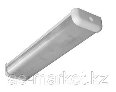 Потолочный светильник ЛПО 01 2x36-021 Standard (ЭПРА)