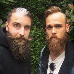 Варианты стрижки и укладки бороды
