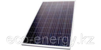 Kioto NEC-320 Wp Pure-72 поликристалл