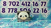 Tony Moly Panda's Dream Clear Pact - Пудра для лица
