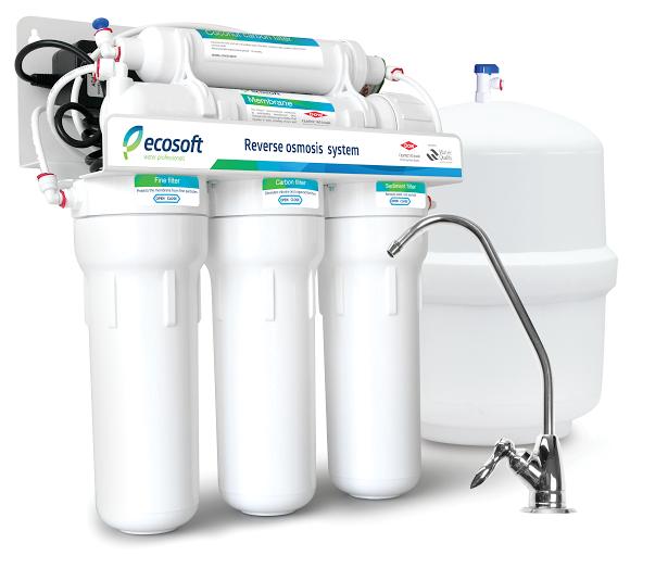 Ecosoft 6-50 pм