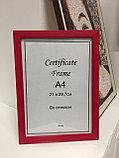 Рамка А4, фоторамка для сертификатов и документов, для вручения красная, под дерево, в розн. и оптом, фото 2