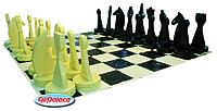 Шахматы с полем - спортивный аттракцион
