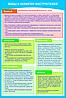 Плакат Все виды инструктажей