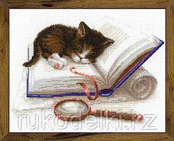"""Набор для вышивания крестом """"Котенок на книжке"""""""