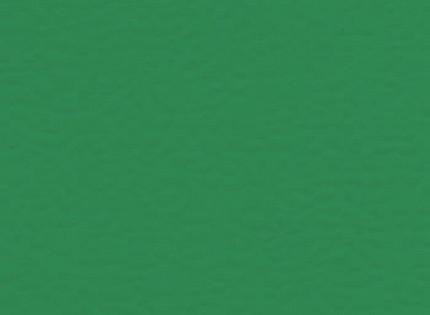 СПОРТИВНОЕ ПОКРЫТИЕ ПВХ-ПОКРЫТИЯ GERFLOR RECREATION 45 6563 MENTA