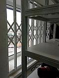 Раздвижные решётки  на двери, фото 4