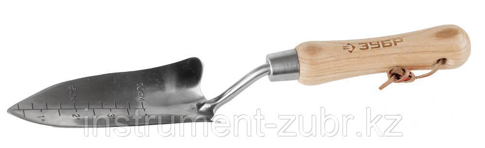 """Совок ЗУБР """"ЭКСПЕРТ"""" посадочный из нержавеющей стали, деревянная ручка из ясеня, 150х65х335мм"""