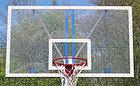 Щит баскетбольный (каленое стекло), фото 4