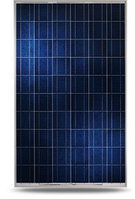 Солнечная панель  NEOSUN NS-320P поликристалическая