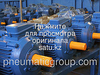 Электордвигатель А 355А8 У3 IM1001 380/660В 50ГЦ IP54