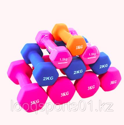 Гантели для фитнеса 3 кг (1.5 кг + 1.5 кг)