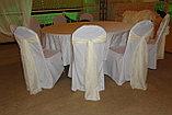 Аренда бантов на стулья, фото 2