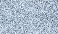 Гранит Серый, фото 1