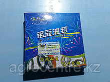 Ремкомплект пневмоцилиндра КПП FAST 860001/688004 (S02348)