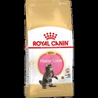 ROYAL CANIN Kitten Maine Coon 36, Роял Канин корм для котят породы Мейн Кун, уп. 4 кг