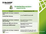 Dr.Web Mail Security Suite, фото 2