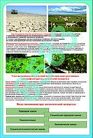 Плакаты Антропогенный ландшафт, фото 1