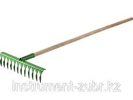 Грабли РОСТОК садовые с черенком, 14 витых зубцов