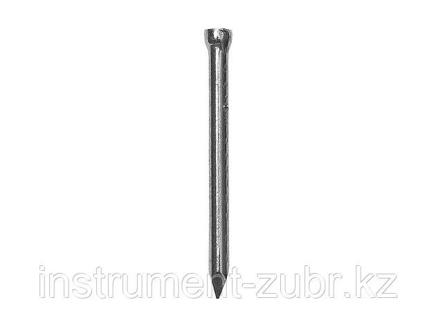 Гвозди финишные ЗУБР 4-305316-16-030, оцинкованные, 30 х 1.6 мм, 150 шт., фото 2