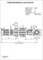 Г/цилиндр выдвижения секции стрелыЦГ-100.80х6000.41 (КС-4572А.63.900-2А)