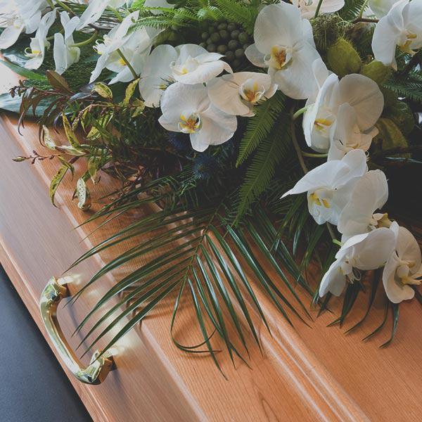 Гробы лакированные