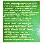 Шампунь Бэлисс от выпадения волос с экстрактом лука., фото 2