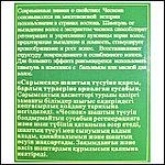 Шампунь Бэлисс от выпадения волос с экстрактом чеснока., фото 2